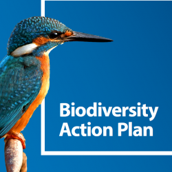 Read more at: Cambridge University launches its 10-year vision for biodiversity