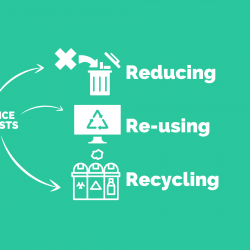 Read more at: Reducing, reusing and recycling just got easier with our new waste guidance!