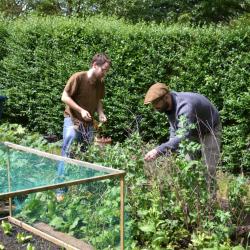 Students in Wolfson student garden